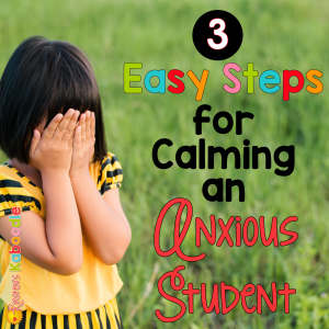 How do you calm an anxious student? 3 Easy Steps for Teachers